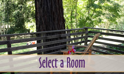 room selection at big sur river inn